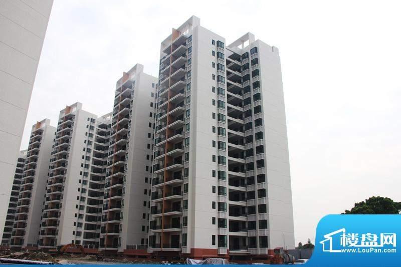 翠湖湾113、115栋洋房外景图(20121208