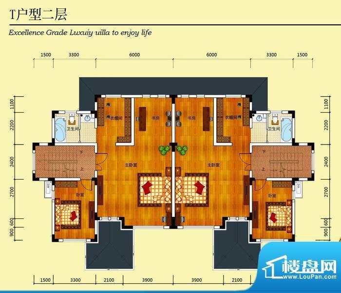 华侨花园T户型二层 面积:235.62m平米