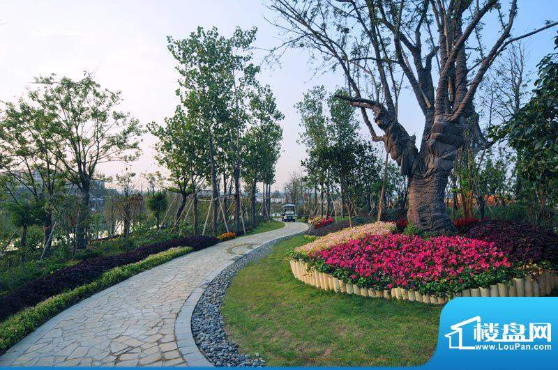 天沐君湖外景图园林