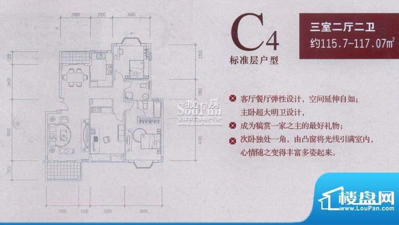 中兴和园户型图C4 3房2厅2卫1厨面积:115.70平米