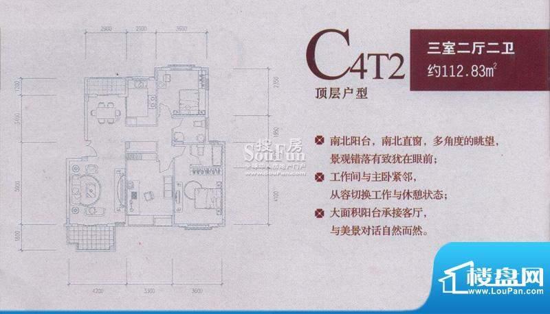 中兴和园户型图C4T2 3房2厅2卫面积:112.83平米