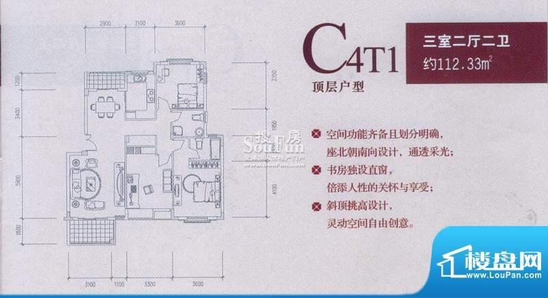 中兴和园户型图C4T1 3房2厅2卫面积:112.33平米