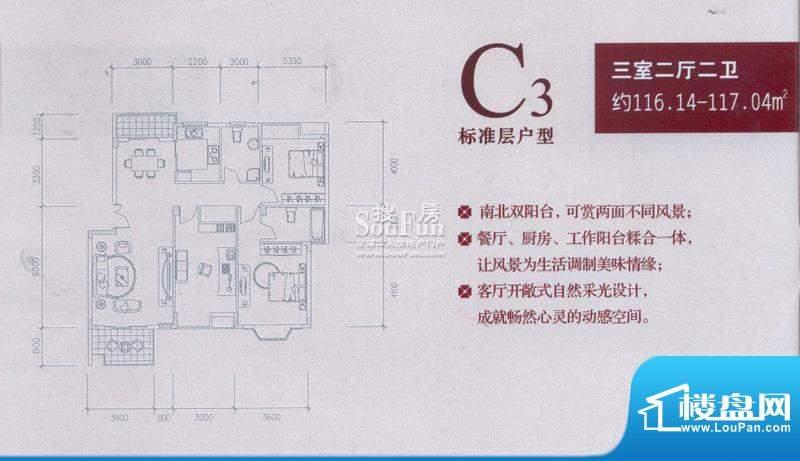 中兴和园户型图C3 3房2厅2卫1厨面积:116.14平米