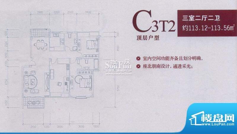 中兴和园户型图C3T2 3房2厅2卫面积:113.12平米