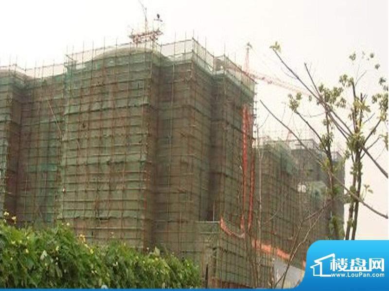 九龙湖商贸城实景图