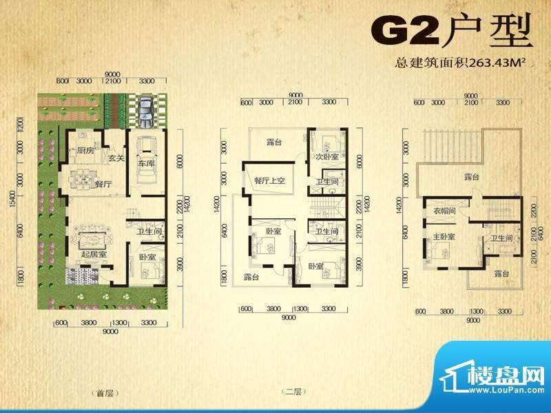中堂户型图G2户型 5室2厅4卫1厨面积:263.43平米