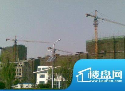 崂山水岸枫景实景图沙盘 20130109