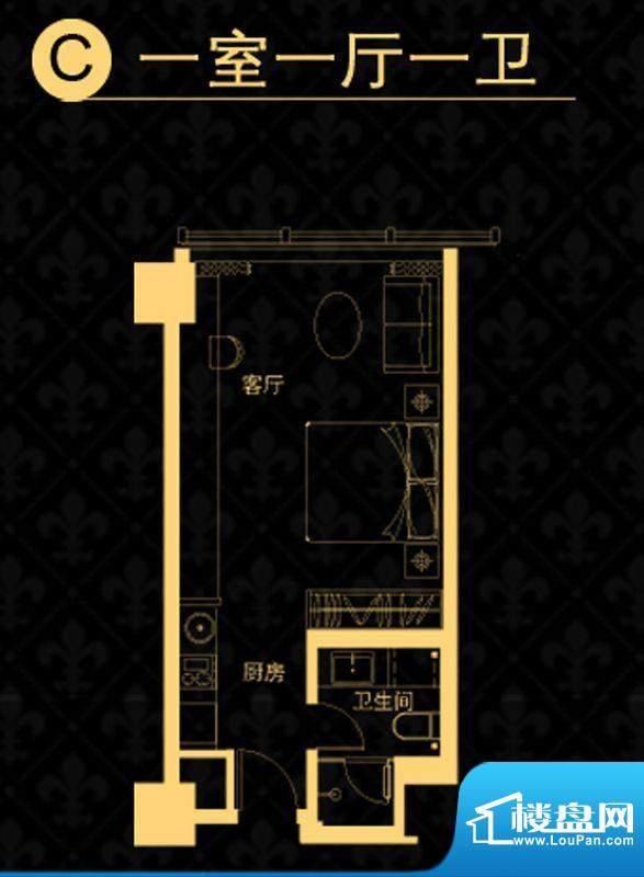 中央悦城户型图公寓C-户型 1室