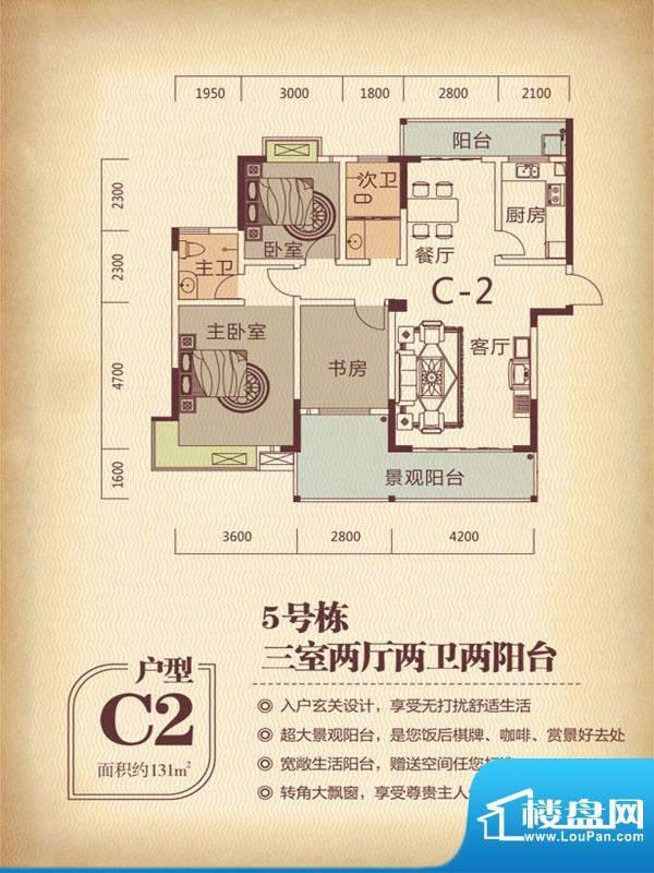 国色天香5栋C2户型 面积:131.00m平米
