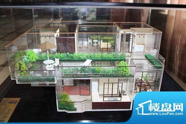 金达帝宝花园户型图户型模型图