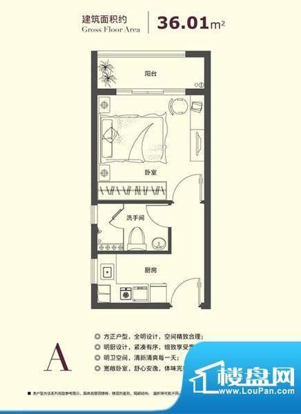 爱乐国际公寓户型图户型图A 面积:36.01平米