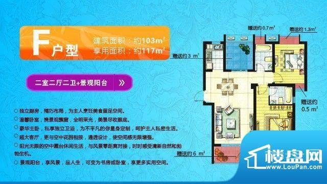 中欧假日花园户型图F户型 两室面积:117.00平米