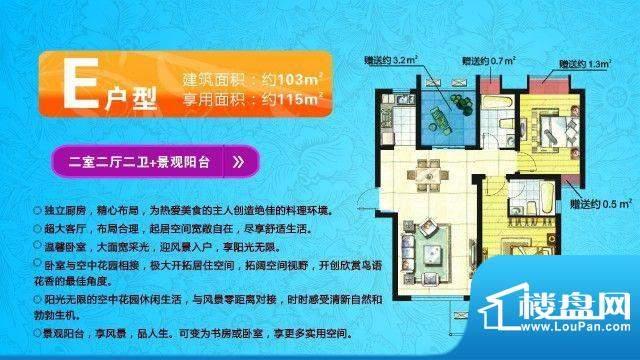 中欧假日花园户型图E户型 两室面积:115.00平米