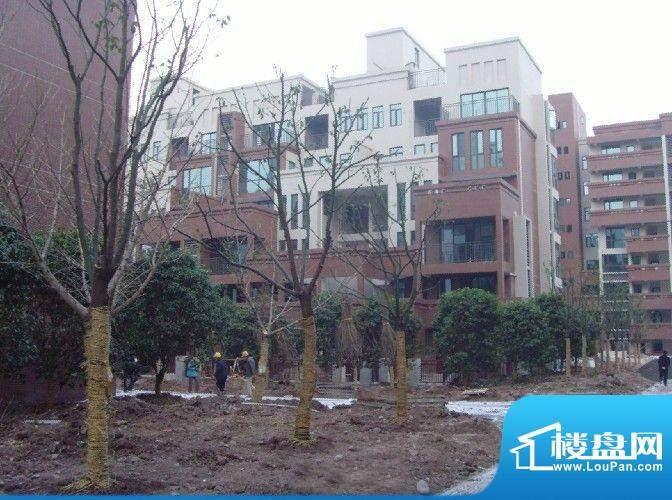中渝滨江一号外景图6号楼北立面(2010.0