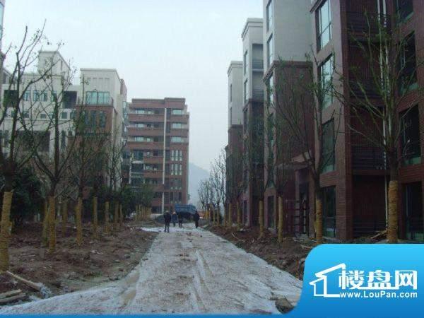 中渝滨江一号外景图7、8号楼(2010.01)