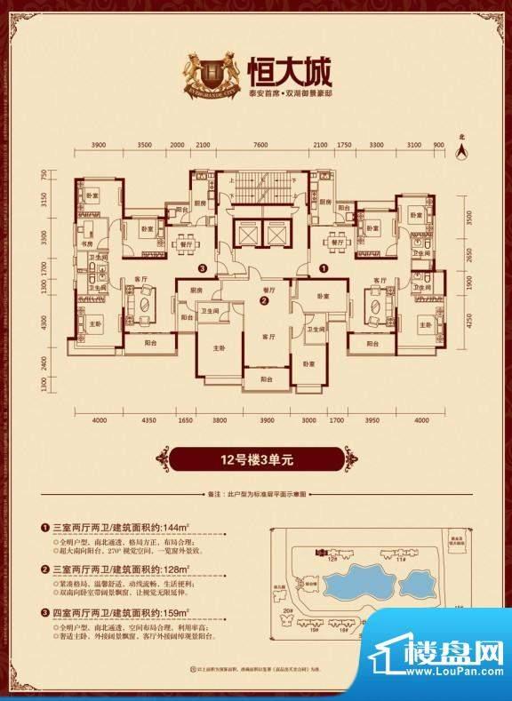 泰安·恒大城户型图12-3