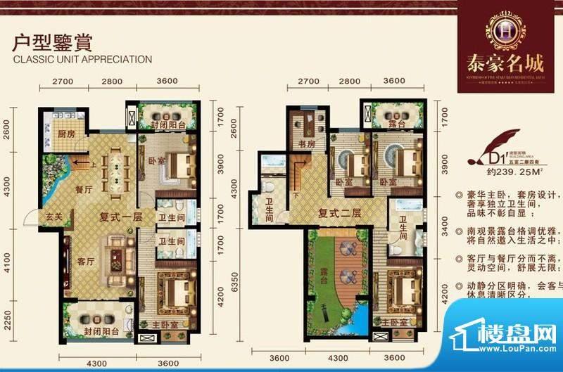 泰豪名城户型图d11 5室2厅4卫1面积:239.25平米