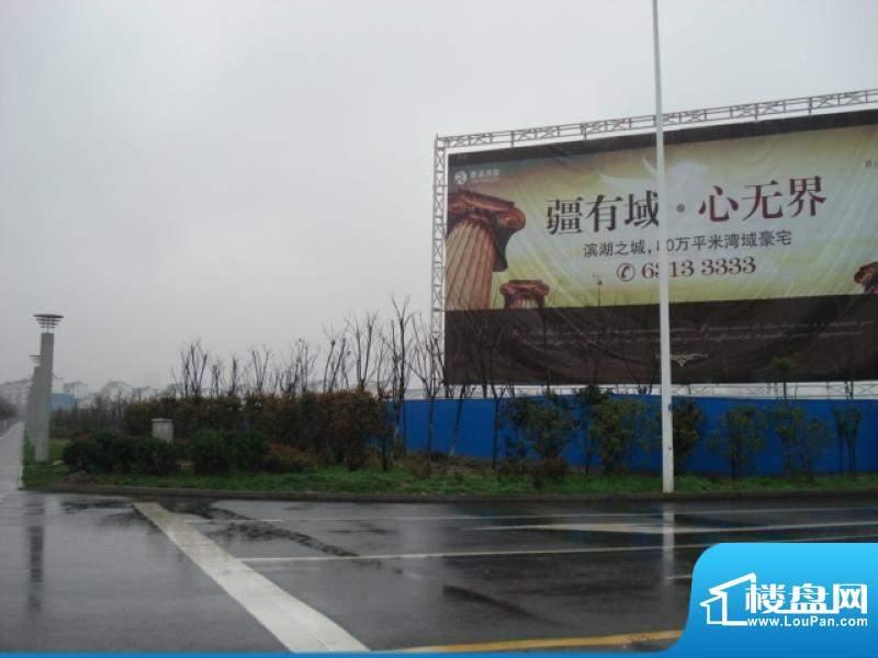 丽湾域外景图现场广告牌(2010.12)