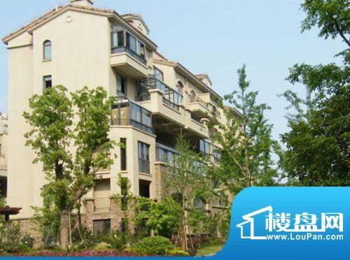 新湖明珠城外景图