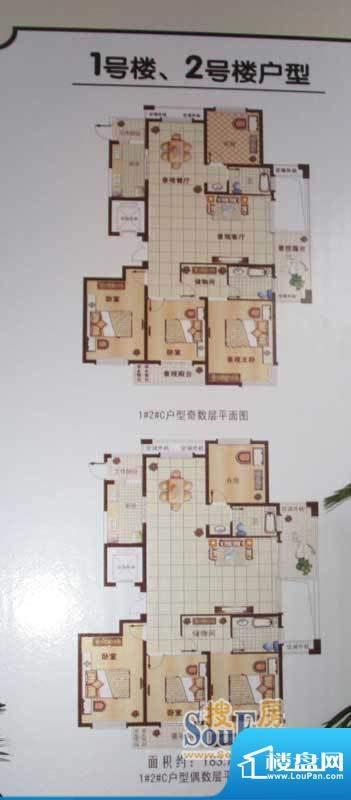 乌桥水岸花园户型图1#2#C户型1面积:183.00平米