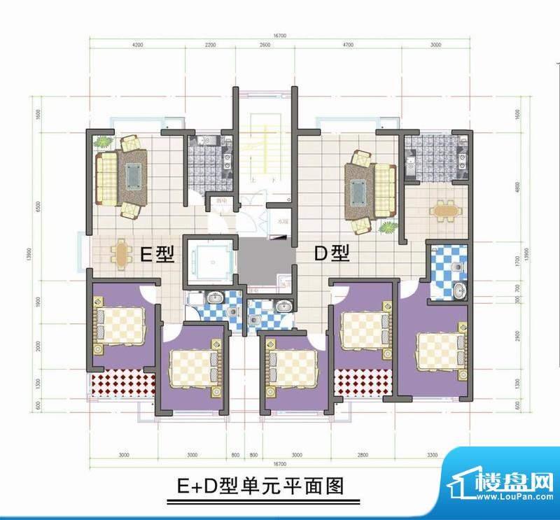 鑫阳家园E D型单元平面积:0.00m平米