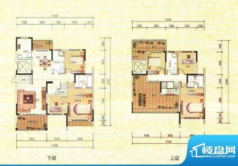 鑫成君泰复式 6室2厅面积:220.00m平米