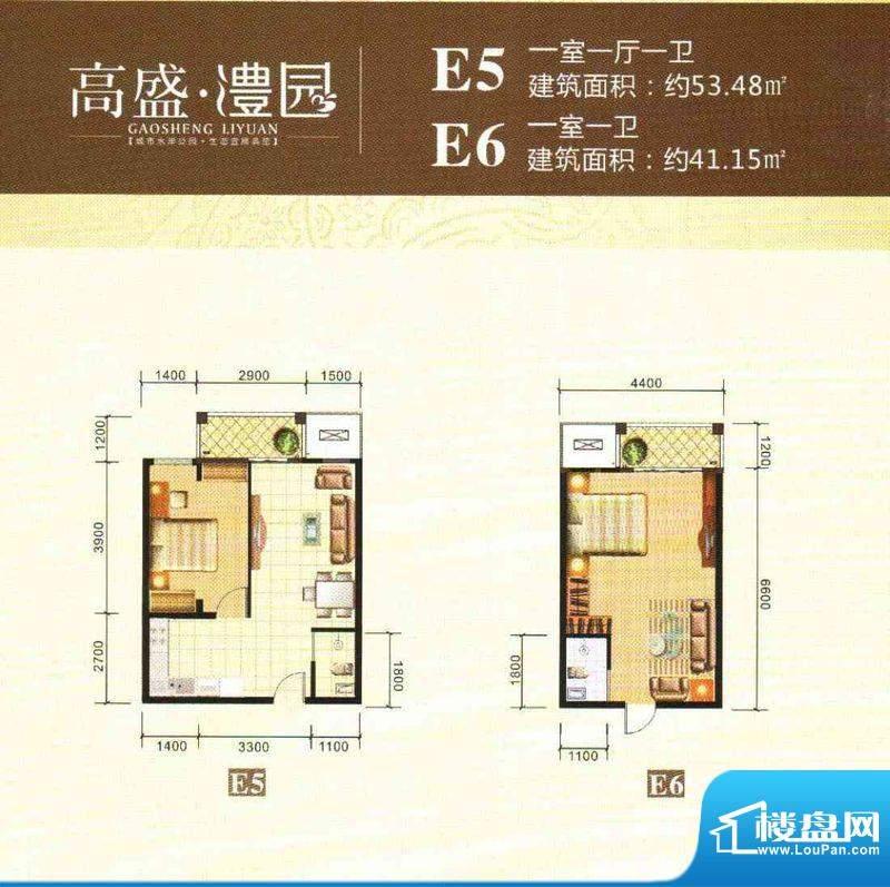 高盛·澧园户型E5、面积:53.48m平米