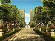 华鸿·中央公园