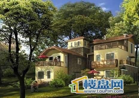 仙女山1号国际休闲度假区效果图