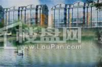 湖畔绿色家园效果图