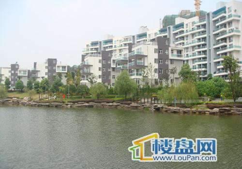 湘麓国际三期公寓实景图