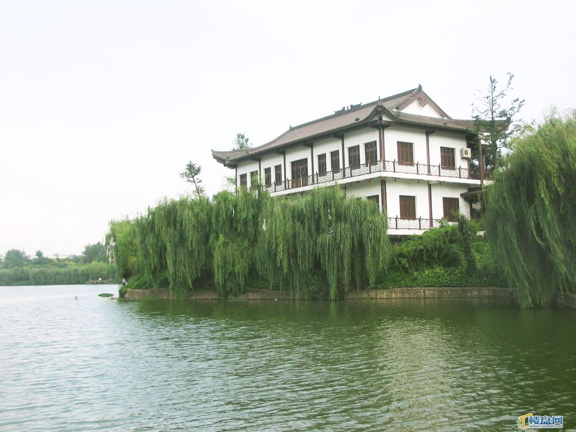 凤池公寓实景图