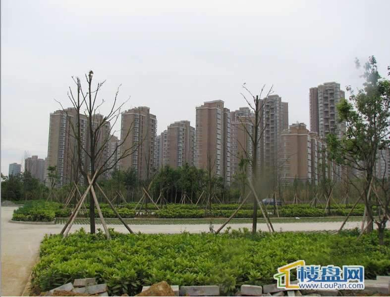 金元国际新城实景图