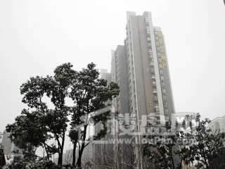 新长江香榭琴台墨园实景图