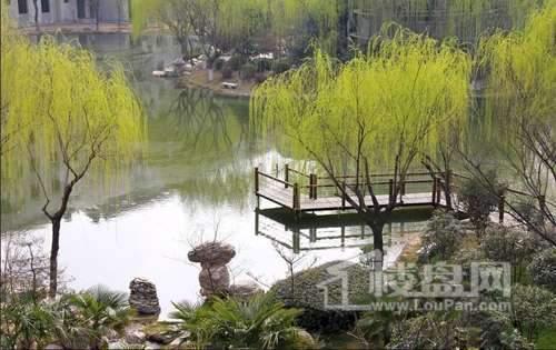 华浮宫桂园实景图