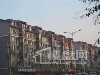 泰富长安城实景图