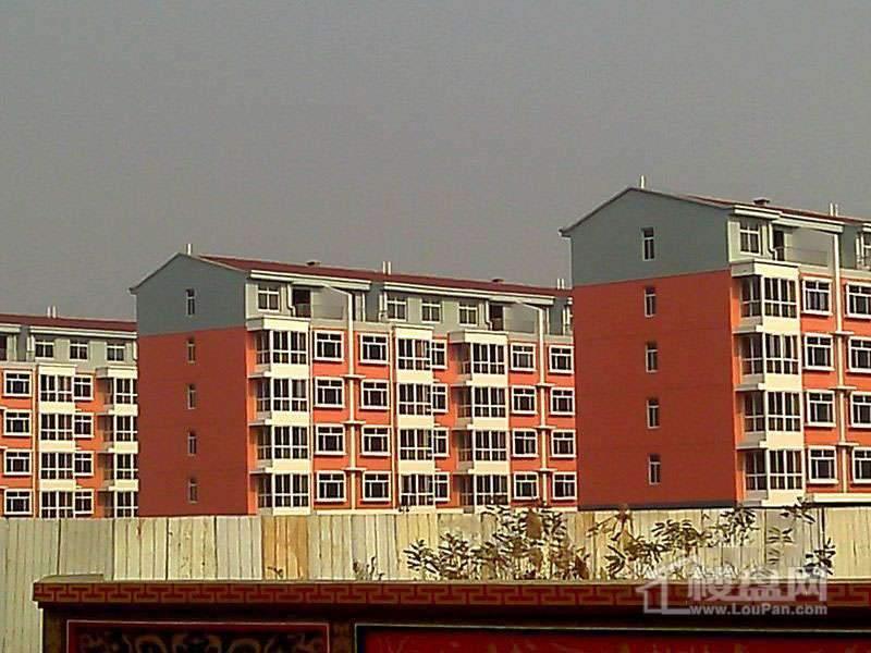 津城雅居实景图