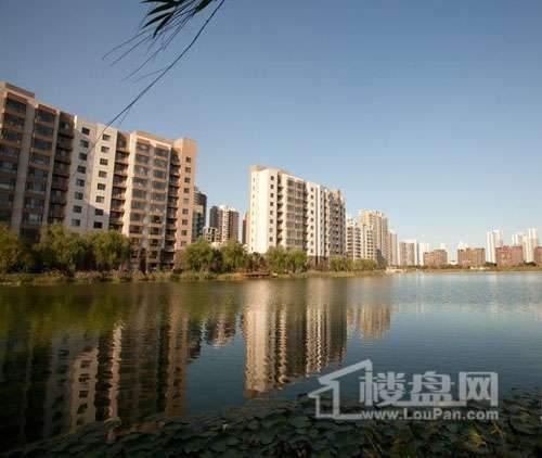 富力津门湖实景图