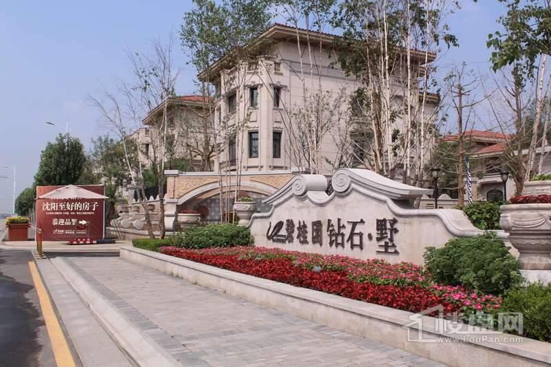 碧桂园银河城 实景图