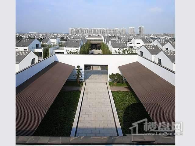 阳光100汀枫渡实景图