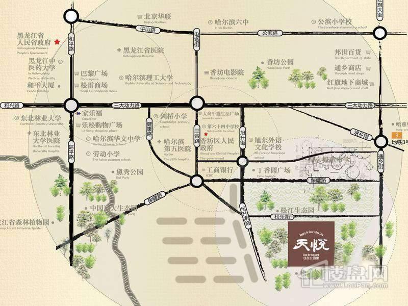 哈尔滨天悦交通图
