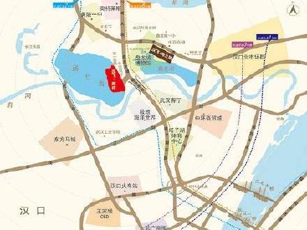 汉飞洋房印象位置图