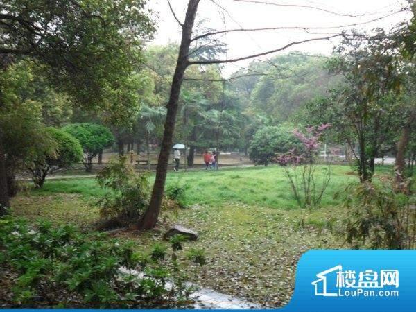 桐梓坡小区