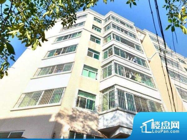东莞市生物技术研究所职工宿舍