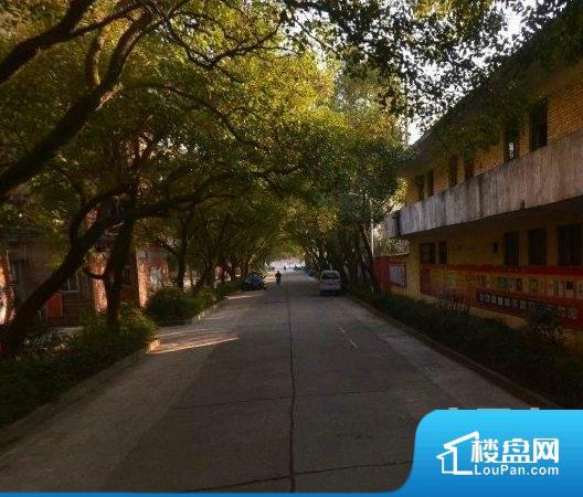 青山湖合成纤维厂宿舍