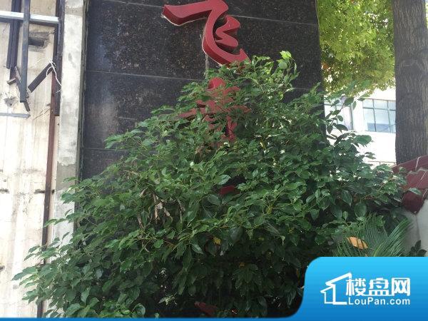 汉飞青年城
