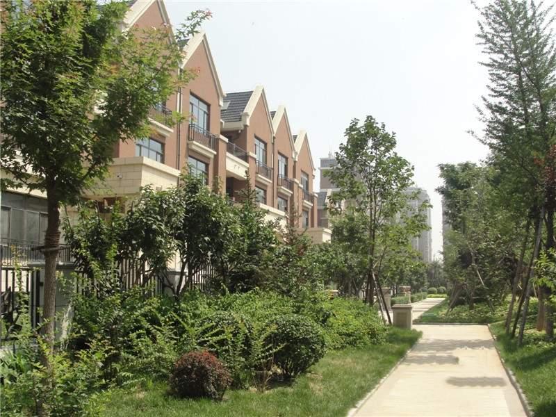 东城绿庭实景图