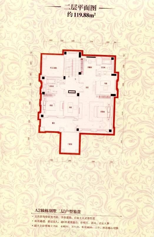 A2独栋别墅二层平面图