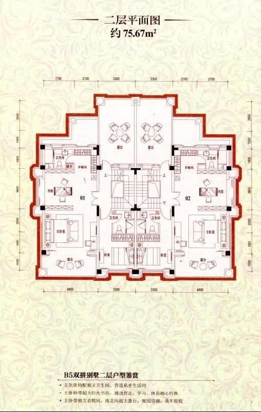 B5双拼别墅二层平面图