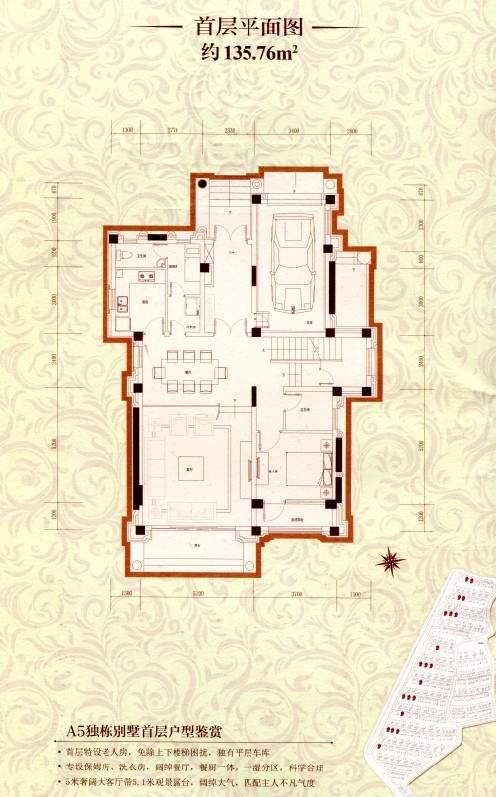 a5独栋别墅首层平面图